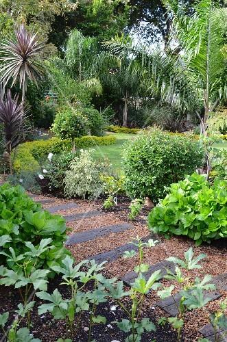 gartenweg aus alten eisenbahnschwellen kies in dicht bepflanztem garten mit palmen bild. Black Bedroom Furniture Sets. Home Design Ideas