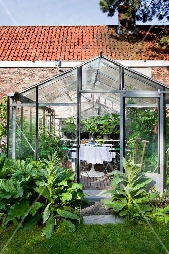 gr npflanzen vor gew chshaus mit sitzplatz weisser tischdecke auf tulip tisch und. Black Bedroom Furniture Sets. Home Design Ideas