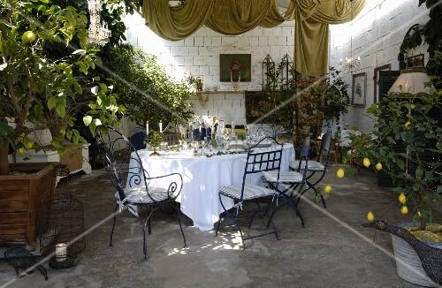 festlich gedeckter tisch mit weisser tischdecke zitronenb ume in pflanzbeh lter bild kaufen. Black Bedroom Furniture Sets. Home Design Ideas