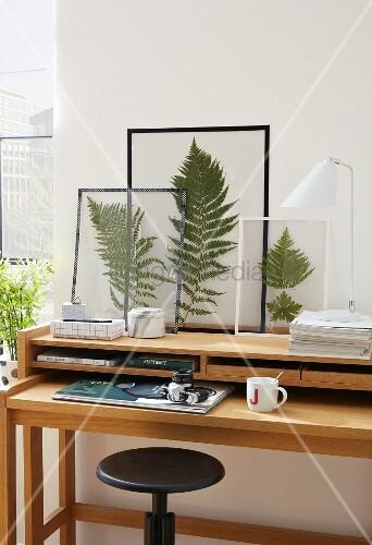 farnbl tter in klarsichtfolien oder zwischen glasscheiben mit masking tape rahmen bild kaufen. Black Bedroom Furniture Sets. Home Design Ideas