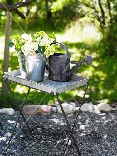 giesskanne und eimer aus zink mit blumen bild kaufen living4media. Black Bedroom Furniture Sets. Home Design Ideas