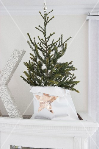 kleiner weihnachtsbaum in papiert te mit sternmotiv bild. Black Bedroom Furniture Sets. Home Design Ideas