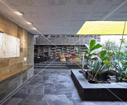 offener wohnraum und blumenbeet mit lichtschacht im haus aus beton bild kaufen living4media. Black Bedroom Furniture Sets. Home Design Ideas