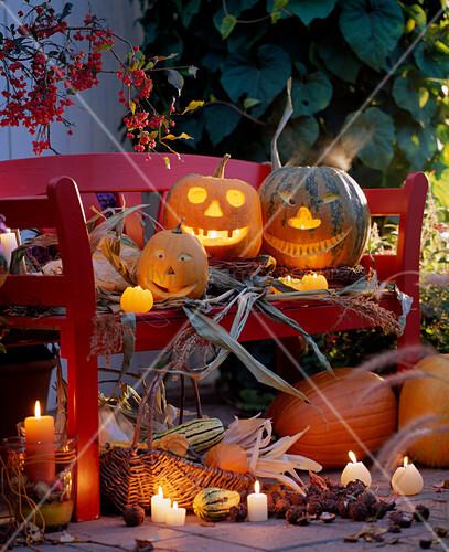 halloween k rbisgesichter auf einer bank arrangiert bild kaufen living4media. Black Bedroom Furniture Sets. Home Design Ideas