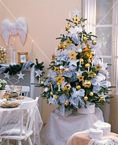abies nordmanniana nordmanntanne als weihnachtsbaum in. Black Bedroom Furniture Sets. Home Design Ideas