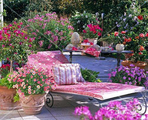 rosa pink rote terrasse mit liege bild kaufen living4media. Black Bedroom Furniture Sets. Home Design Ideas