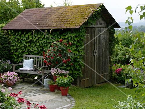 kleine runde terrasse mit bank und k belpflanzen bild. Black Bedroom Furniture Sets. Home Design Ideas