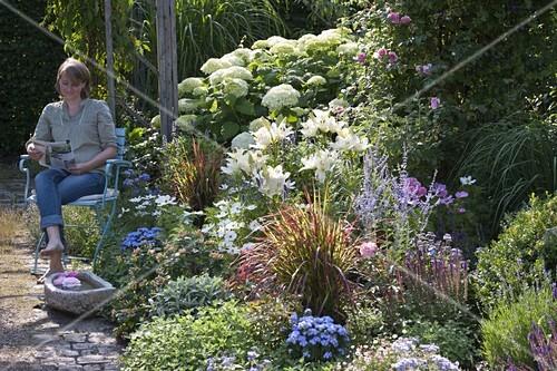 beet mit lilium lilien hydrangea arborescens annabelle hortensie bild kaufen living4media. Black Bedroom Furniture Sets. Home Design Ideas