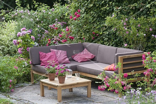 lounge ecke auf kleiner terrasse zwischen rosen bild kaufen living4media. Black Bedroom Furniture Sets. Home Design Ideas