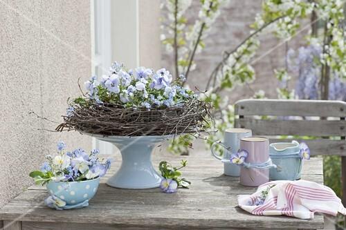 hellblaue tischdeko aus viola cornuta hornveilchen und. Black Bedroom Furniture Sets. Home Design Ideas