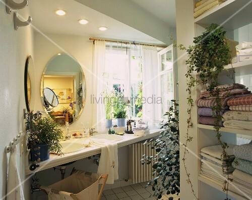gr ne oase im bad mit cissus mistelfeige zyperngras etc bild kaufen living4media. Black Bedroom Furniture Sets. Home Design Ideas