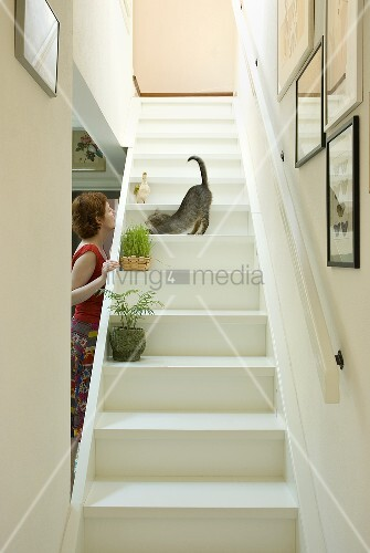frau spielt mit katze auf weisser holztreppe treppe. Black Bedroom Furniture Sets. Home Design Ideas