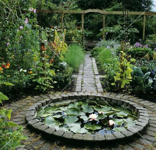 Small Water Lily Pond In Garden Bild Kaufen Living4media