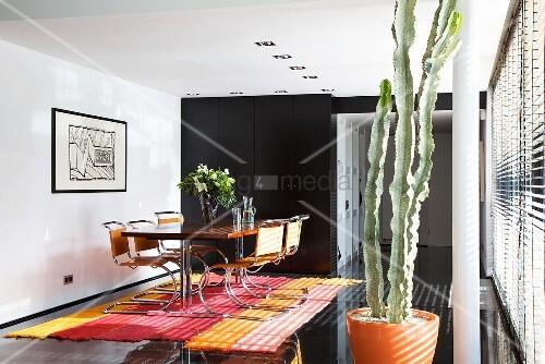 esstisch mit freischwingern auf gestreiftem teppich schwarzer fliesenboden kaktus in. Black Bedroom Furniture Sets. Home Design Ideas