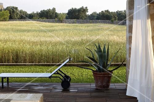 terrasse mit liege und agave im topf vor getreidefeld bild kaufen living4media. Black Bedroom Furniture Sets. Home Design Ideas