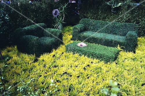 ein wohnzimmer topiari aus verschiedenen pflanzen bild kaufen living4media. Black Bedroom Furniture Sets. Home Design Ideas