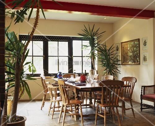 rustikaler tisch und st hle im esszimmer mit palmen im topf bild kaufen living4media. Black Bedroom Furniture Sets. Home Design Ideas