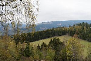 Bildno.: 12550247