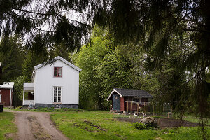 Bildno.: 12550765