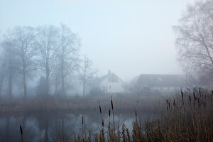 Bildnr.: 13401673