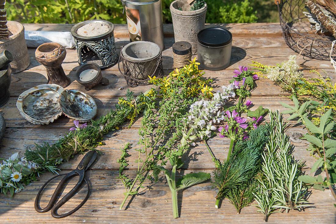 The Garden of Healing