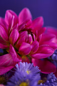 Florierender Spätsommer