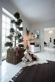 Delicate Christmas Home