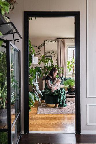 Ein Dschungel mitten in Stockholm