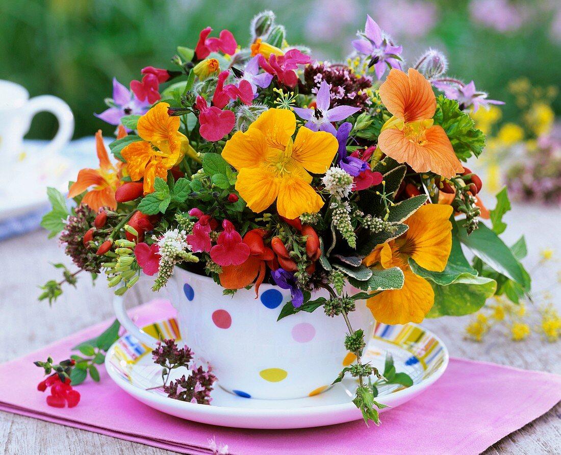 Arrangement of herbs and bean flowers
