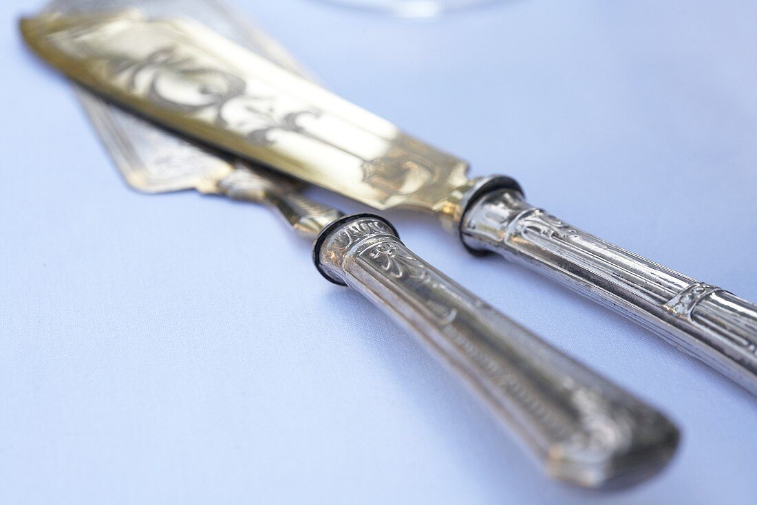 Silver cake cutlery (a cake knife and a cake slice)