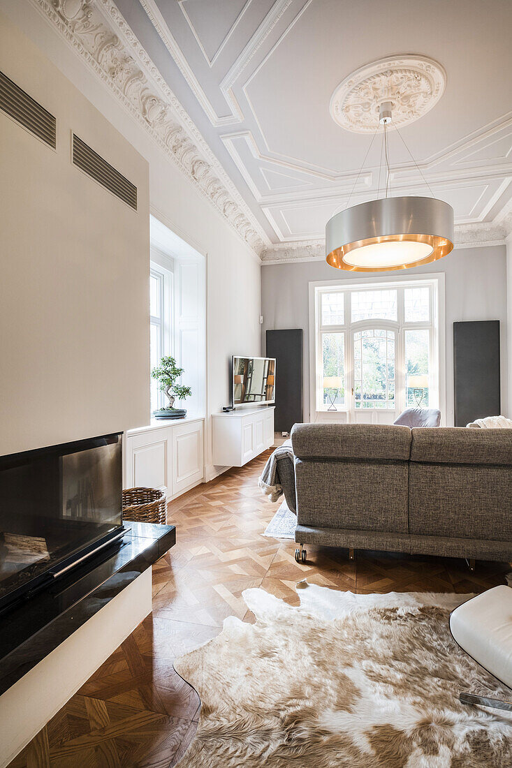 art nouveau apartment with modern facilities, Hamburg, north Germany, Germany