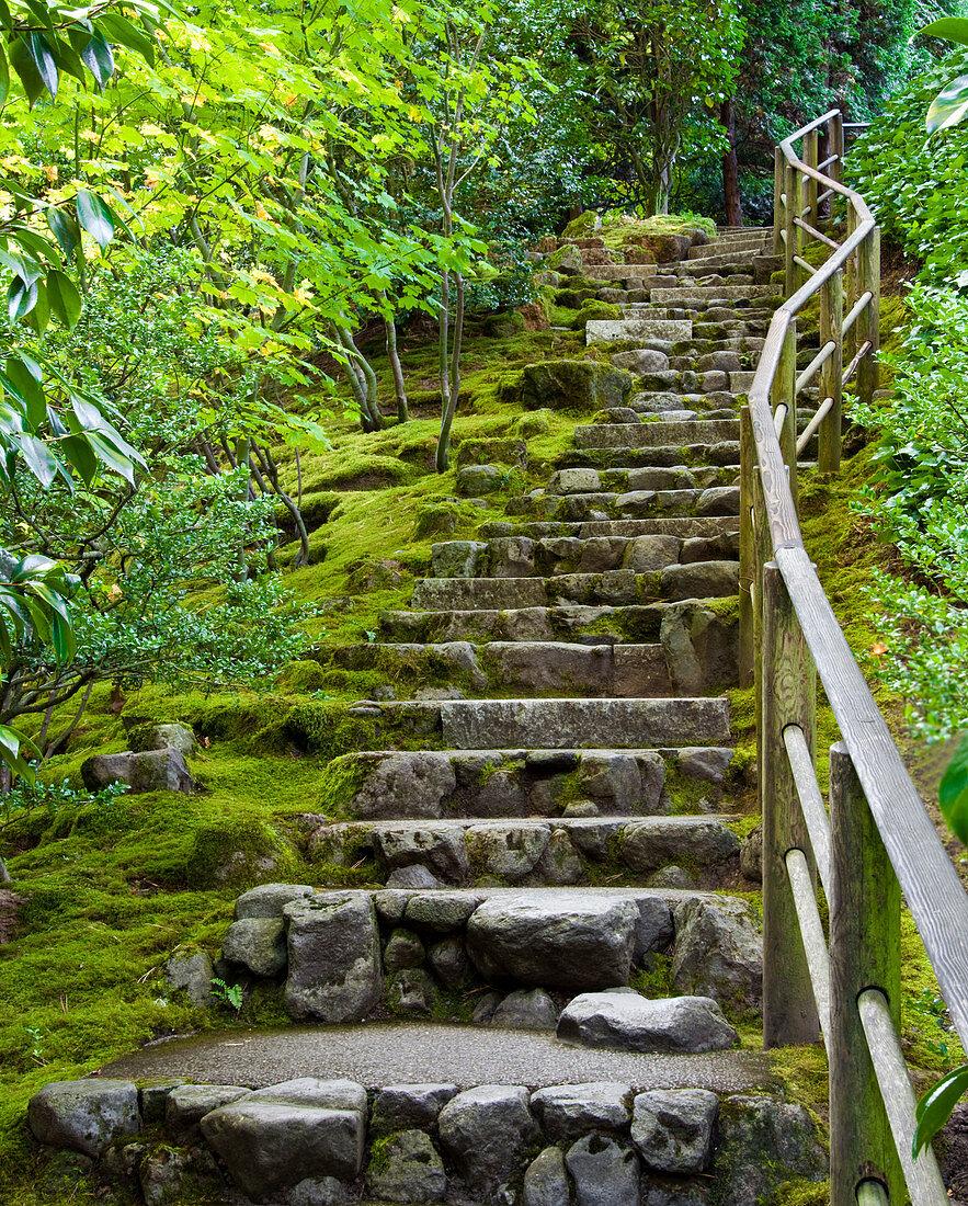 Outdoor Stone Stairway, Portland, Oregon, USA