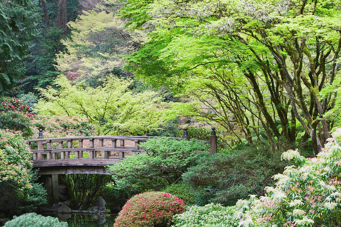 Wooden footbridge in Japanese Garden, Portland, Oregon, United States