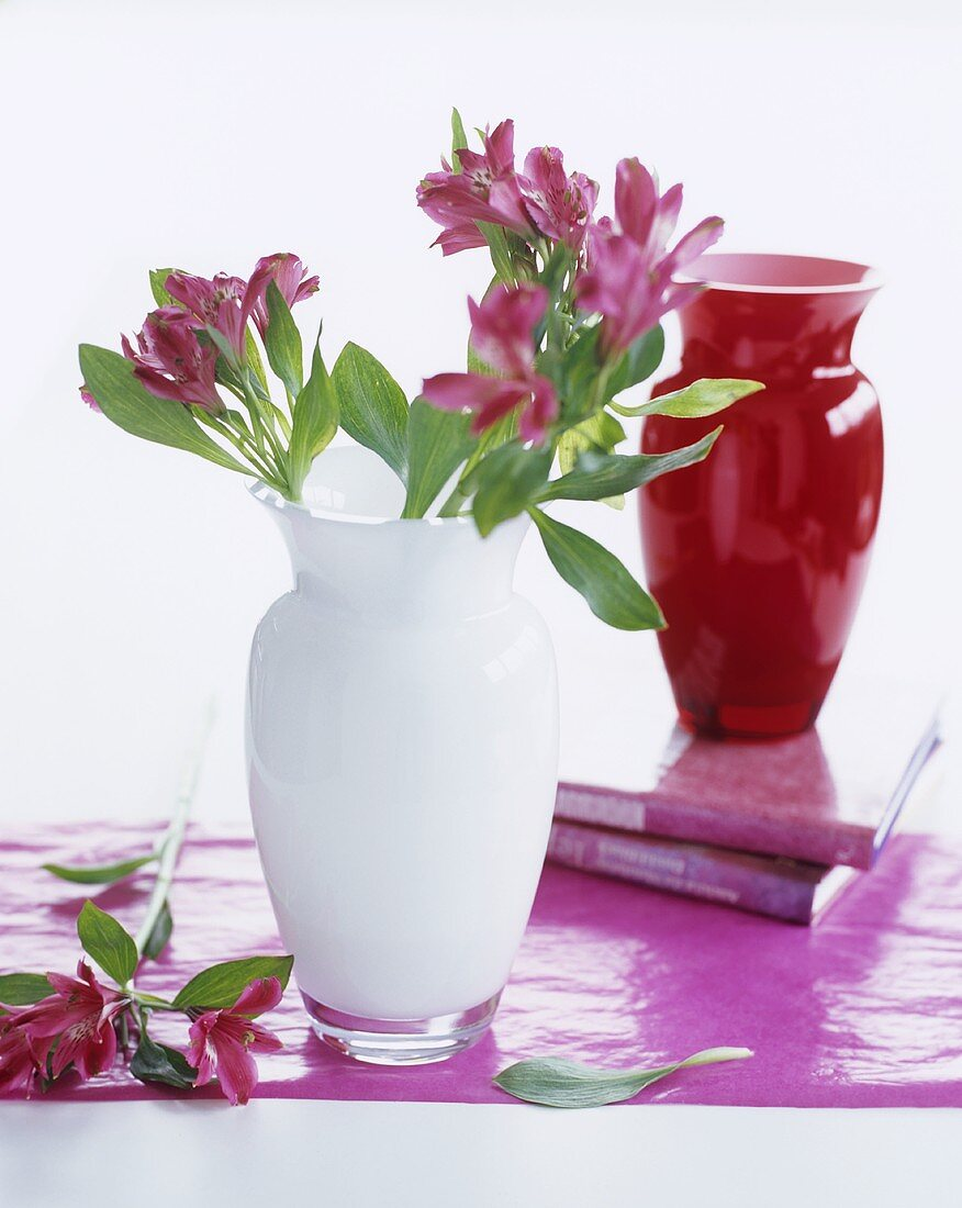 Inca lilies in white glass vase