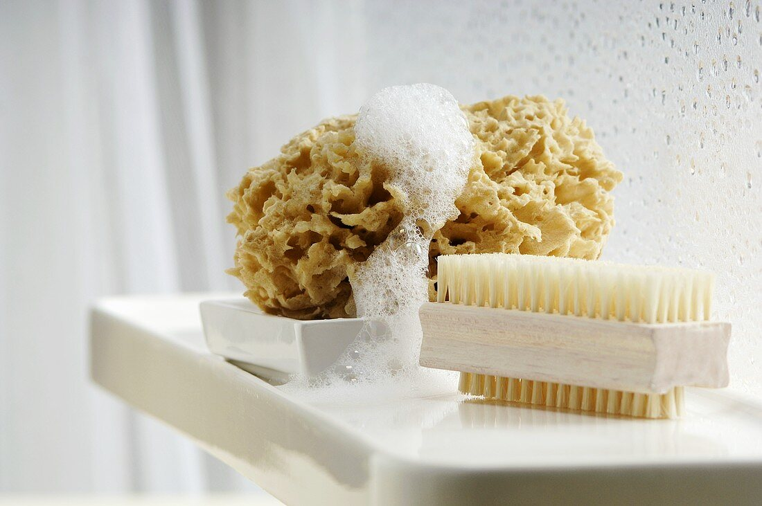 Nailbrush and sponge in bathroom