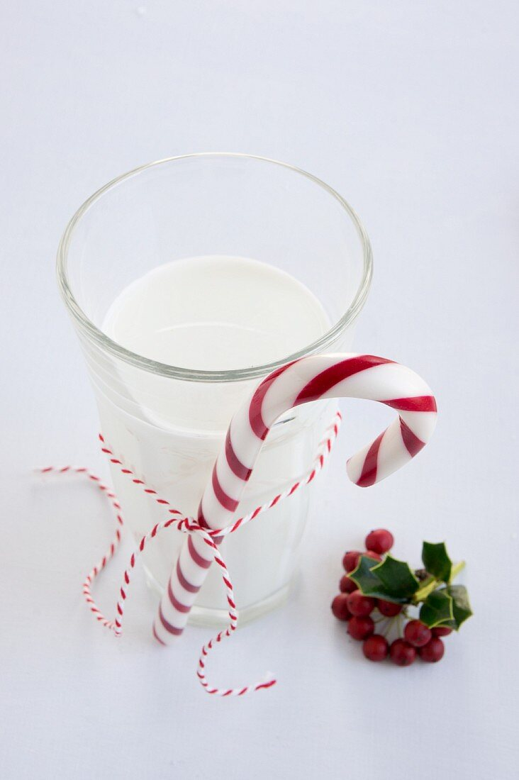 Candy cane tied to glass of milk next to holly berries