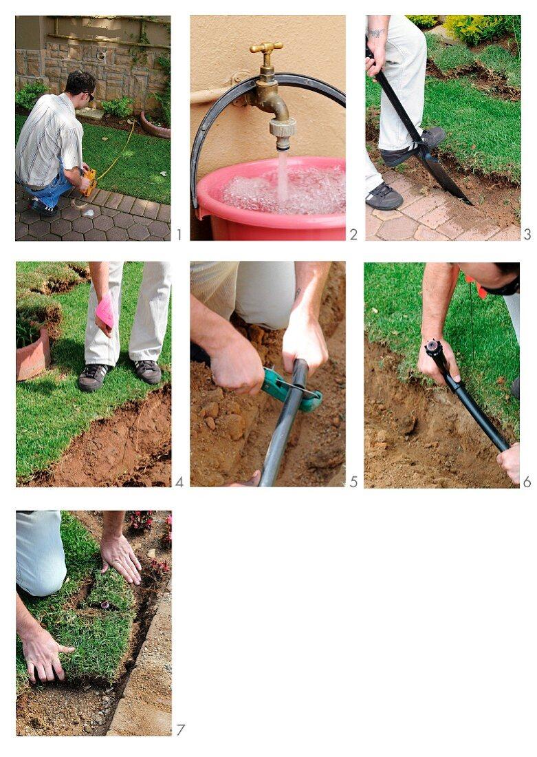 A sprinkler irrigation system being installed in the garden