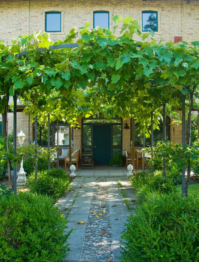 Path with vine covered pergola in front … – Buy image – 20 ...