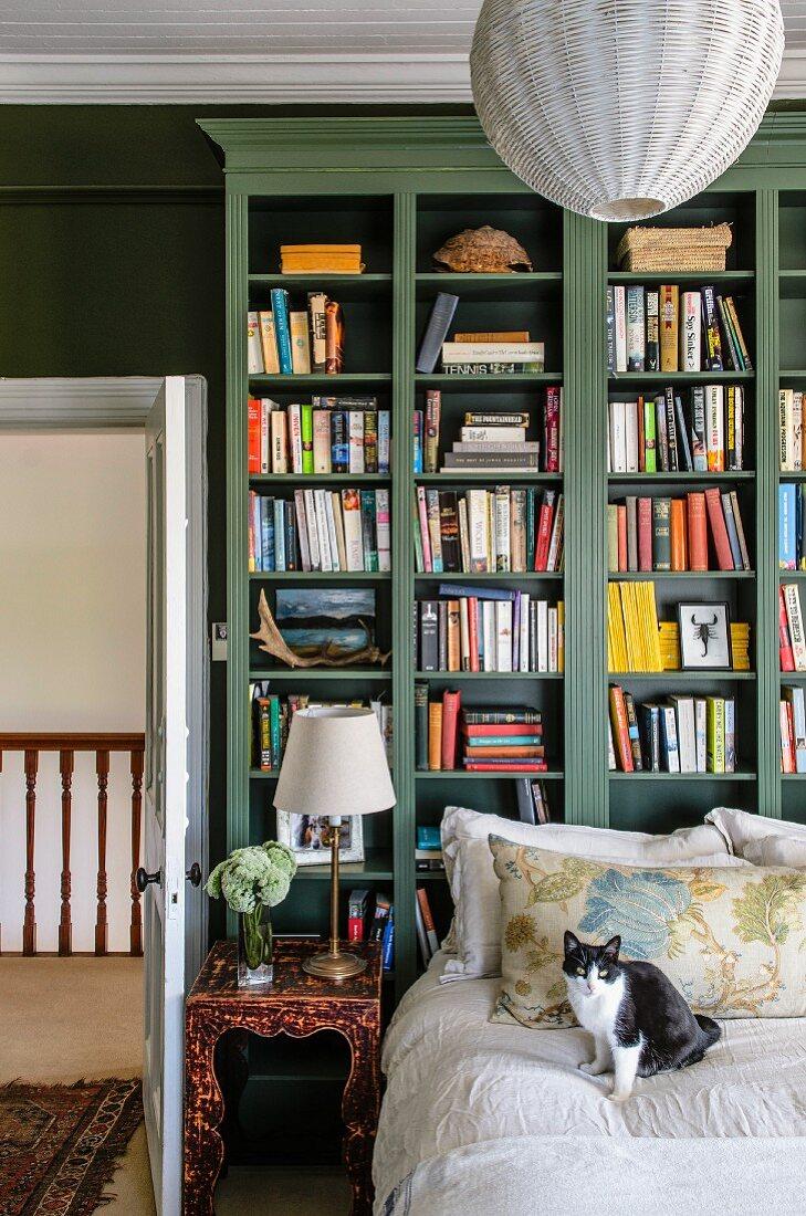 Cat on bed in front of green bookcase next to open door