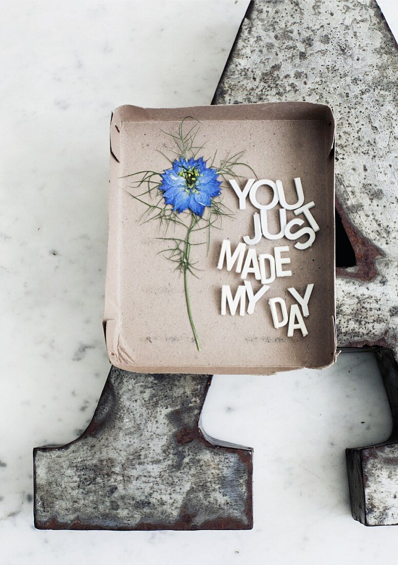 Pressed love-in-a-mist flower (Nigella 'Moody blues') next to affectionate message arranged in cardboard box lid on large metal letter