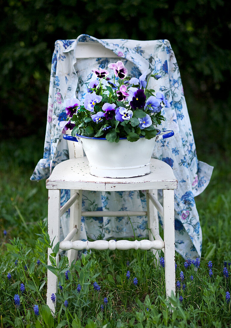 Floral blouse and blue and purple violas on old wooden chair amongst grass
