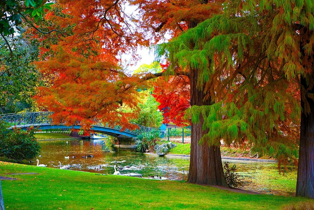 Autumn atmosphere in park with river