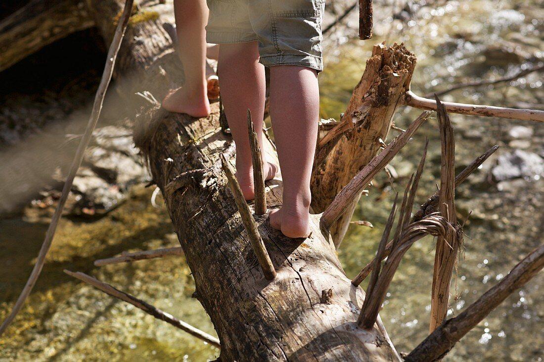 Mädchenfüsse balancieren auf einem Baumstamm