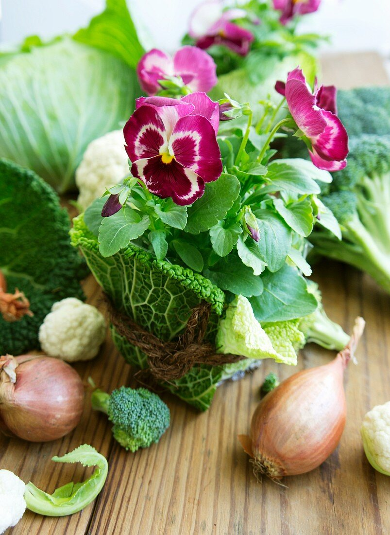 Pansies wrapped in savoy cabbage leaves