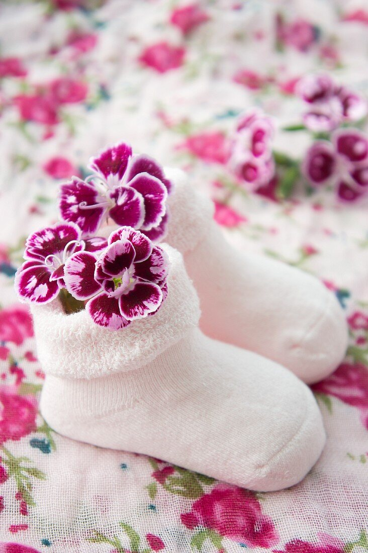 Pink baby socks with carnations