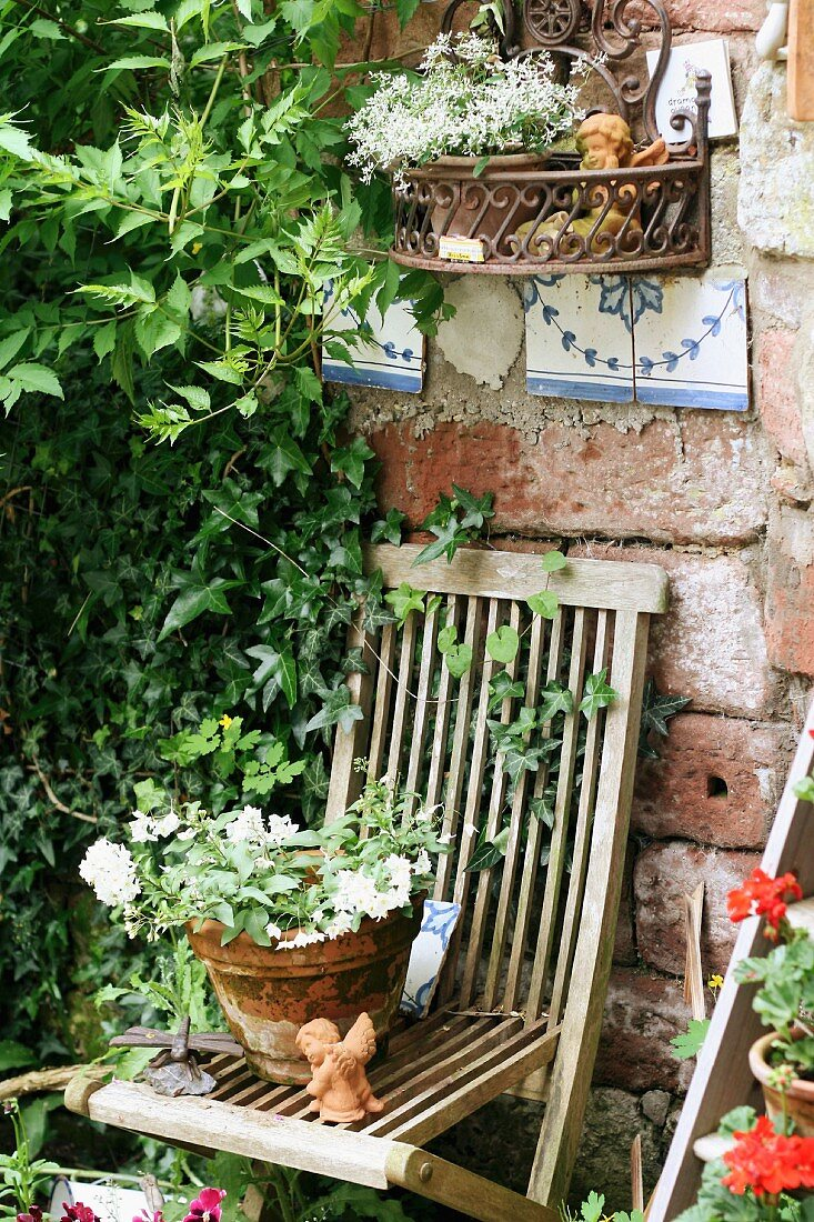 Flowering plant in terracotta pot on wooden garden chair