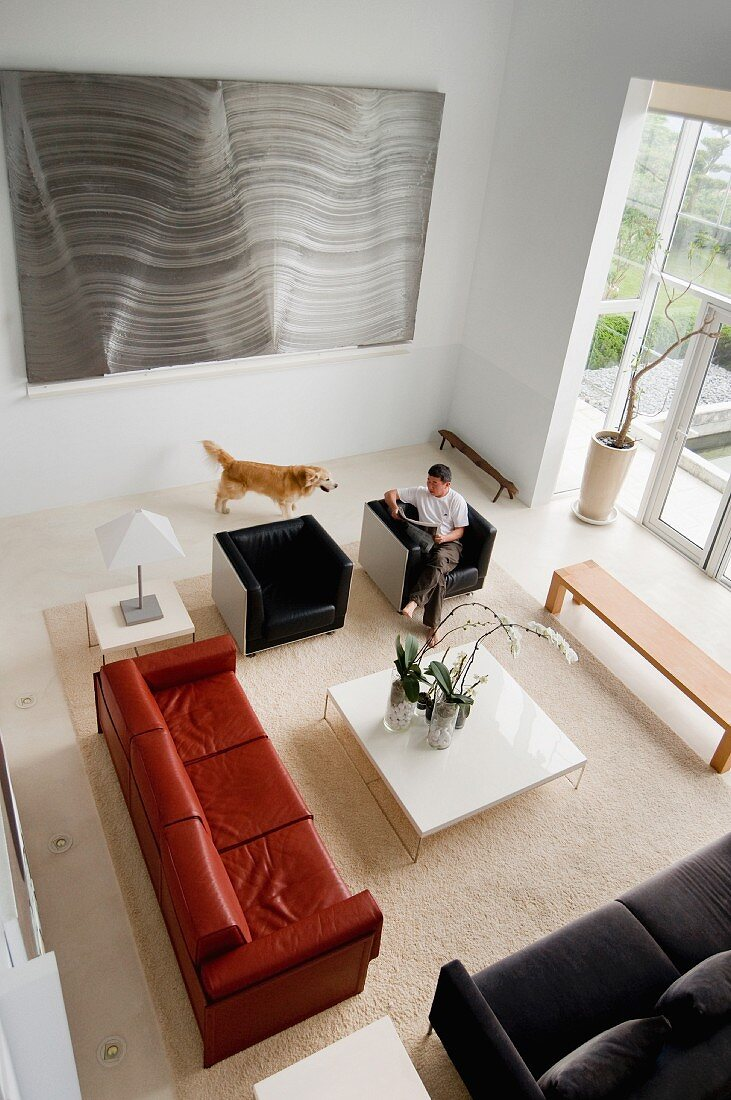 High angle view of a man relaxing with pet dog in contemporary living room