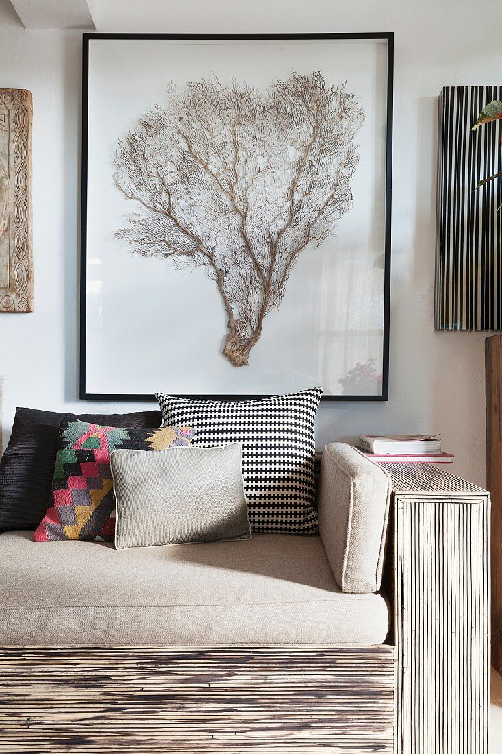 Framed coral fan above sofa in modern natural style