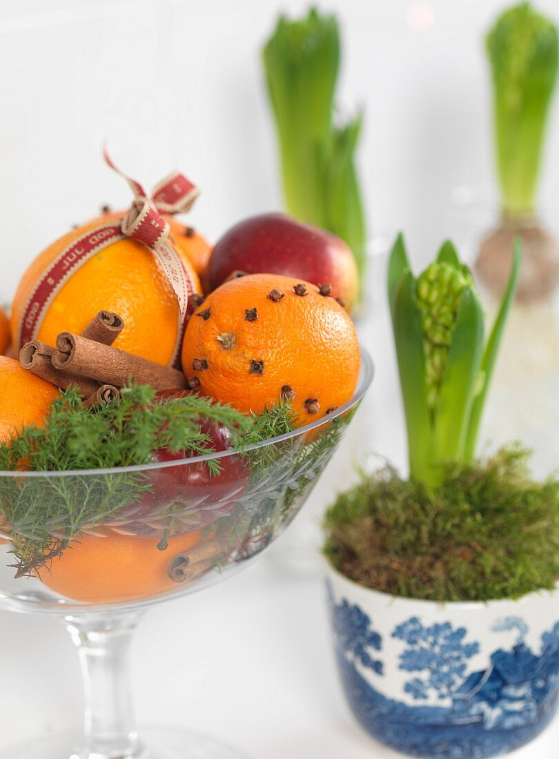 Orange and clove pomanders and cinnamon sticks in glass bowl next to potted hyacinths