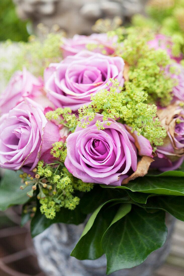 blumenstrauss aus violetten rosen  bild kaufen  11348535